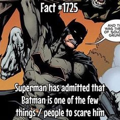 754 Likes, 2 Comments – Superhero Facts Daily ( on Instag… Batman Facts, Superhero Facts, Marvel Facts, Joker Facts, Batman Quotes, Funny Batman, I Am Batman, Batman Vs Superman, Marvel Dc Comics
