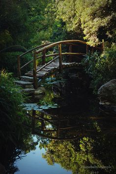 The cabin goldfish pond had a little rustic bridge like this one