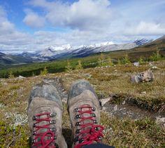 Travel blog about Mount Assiniboine Provincial Park Alpine Meadow, Canadian Rockies, Roads, Adventure Travel, Park, Blog, Road Routes, Street, Parks
