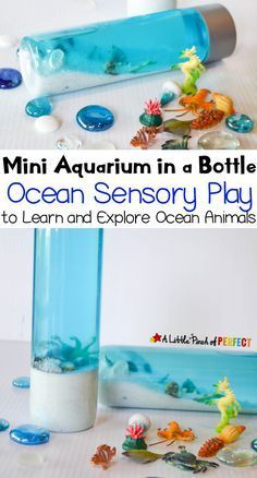 Ocean Aquarium Sensory Bottle: Kids can learn and explore sea animals with their own mini aquarium sensory bottle. (summer, sand, shells, kids activity)