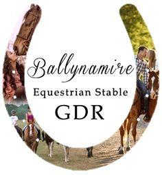 itscactus - Ballynamire Equestrian Stable - GDR