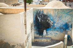 Djerbahood, mural project in Tunisia - Graffiti South Africa, C215.