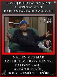 Black M, Karma, Funny Pictures, Jokes, Lol, Smile, Fanny Pics, Husky Jokes, Funny Pics