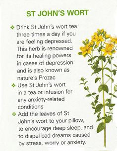 the benefits and negative effects of prozac and st johns wort Does st john's wort work for depression providing the same benefits as prozac negative effects of st john's wort 2.