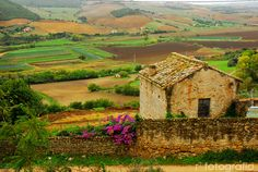 Discover the world through photos. Great Places, Beautiful Places, Places In Italy, I Want To Travel, Travel Bugs, Sicily, Bellisima, Tuscany, Cool Pictures