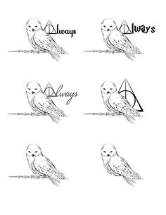 Check it out Potter Heads! A tattoo design for a friend, based on Hedwig from Harry Potter Hedwig Tattoo, Hp Tattoo, Deer Tattoo, Wrist Tattoo, Inca Tattoo, Lion Tattoo, Tattoo Quotes, Samoan Tattoo, Polynesian Tattoos