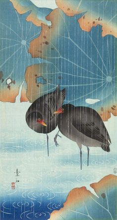 Two Gallinules and Lotus Leaves in Shallow Water in the Rain. Woodblock print, 20th century, Japan, by artist Soseki.