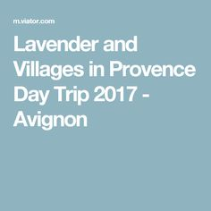 Lavender and Villages in Provence Day Trip 2017 - Avignon