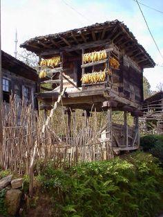 Serander Doğu Karadeniz Bölgesi'nde genelde kiler ya da tahıl ambarı olarak kullanılan tahtalardan yapılan genellikle dört nadiren altı, sekiz hatta oniki direkli küçük ahşap yapıların adıdır .. Ve bir zamanlar, ailenin zenginliği, o tahıl ambarının direklerinin sayısıyla ölçülürmüş ..