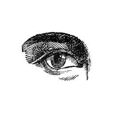 Antique Images Human Eyes ❤ liked on Polyvore featuring drawings and body parts