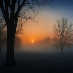Photo Sunrise in fog by Dave B on 500px