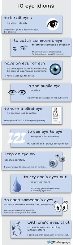 25 Best Funny And Entertaining Images Eyes Optometry Office Desk