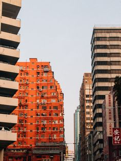 Hong Kong: What to do & what to see in weniger als 8 Stunden National Geographic, Empire, Hongkong, Skyline, Building, Travel, Europe, Shopping Center, Small Shops