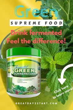 Drink fermented and feel the difference in your body. Green supreme food is a concentrate of fermented vegetables. Fermented food is ideal for the body, read more here! [May contain an affiliate link, but it does not affect your price in any way. Vegetarian Lifestyle, Healthy Lifestyle, Detoxification Diet, Body Cleanse, Healthy Diet Recipes, Food Facts, Fermented Foods, Alternative Health, Diet Tips