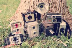 I have a lot of these ! When Brad and I go to Westfield, NY there is an antique shop there that carries them :)  Vintage Camera Collection.