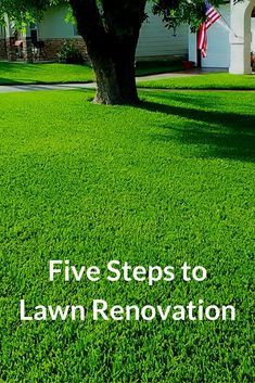 Watch this video to learn five steps to lawn renovation that focus on improving existing lawn conditions. Learn how to choke out weeds and improve the quality of grass.