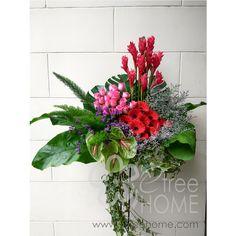 Congratulatory Stand - E-Tree Home Florist & Plant Rental