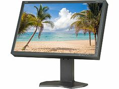 "NEC Display Solutions MultiSync P241W-BK Black 24.1"" 8ms  Widescreen LCD Monitor"