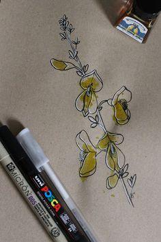"Day 25: Xesta (Retama negra) ""Cytisus scoparius""  #InkTober #InkTober2016 #InkToberEspaña #FloraDaGaliza Inktober, Tattos, Dream Catcher, Drawings, Inspiration, Infancy, Parts Of The Mass, Tatuajes, Flowers"