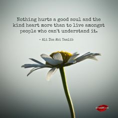 Nothing hurts a good soul more