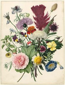 Florals-Collected works of Francesca - All Rijksstudio's - Rijksstudio - Rijksmuseum