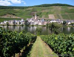 Europe Video Productions Travel Photo: Merl Village Mosel Wine road in Romantic Germany : wine village of Moselle Valley tourism Mosel Germany, Photo Voyage, Wine Vineyards, Need A Vacation, Weekend Trips, France, Germany Travel, Holiday Destinations, World Heritage Sites