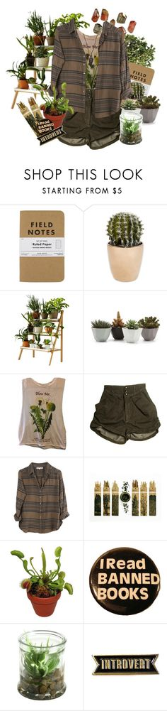 """Green Witch"" by weedscruff ❤ liked on Polyvore featuring Kekkilä, Urban Outfitters, Xirena, Alöe and Lou Zeldis"