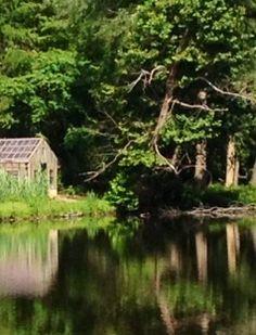 Lake Timberlake...photo by Rebecca Parker