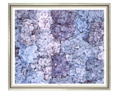 CHINOISERIE Collection ~ Looking for art work? Blue Hydrangea is a beautiful flower and that is really brought out in this large scale photograph. Many heads of the plant are bunched together, showing the detail of the simple, individual, round flowers. The tones of blue and purple are gorgeous and feminine and have a really delicate and pretty charm to them. Contemporary Silver Frame with linen slip. Dimensions: W43 H51  We ship World Wide.