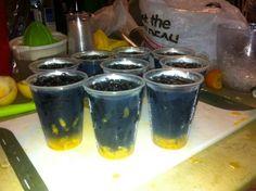 """Vodka preta""+""maracuja (fruto)""+""sumo de maracuja(industrializado)"" uma composição magnifica!!! By:Sanderson"