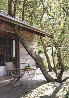 La nature s'est emparée de la terrasse de cette cabane du Cotentin. Plus de photos sur Côté Maison http://petitlien.fr/7exx