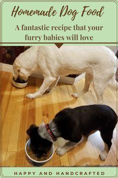 Food Dog, Canned Dog Food, Homemade Dog Treats, Healthy Dog Treats, Dog Treat Recipes, Dog Food Recipes, Dog Food Container, Akita Dog, Dog Diet