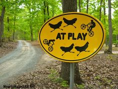 At Play Sign from old satellite dish.