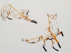Two foxes, watercolours.
