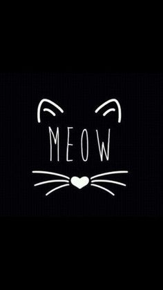Meow cute wallpapers, dark phone wallpapers, phone backgrounds, wallpaper b Phone Backgrounds, Wallpaper Backgrounds, Iphone Wallpaper, Crazy Cat Lady, Crazy Cats, Wallpaper Fofos, Sea Wallpaper, Kitty Wallpaper, Black Wallpaper