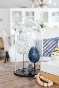 Craftberry Bush | DIY Egg Specimen Cloche Display | http://www.craftberrybush.com