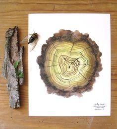 """Mossy Log Tree Rings"" digital art print watercolor by GollyBard, $36.00 through Etsy."