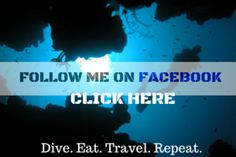 True Nomads- Dive. Eat. Travel. Repeat.