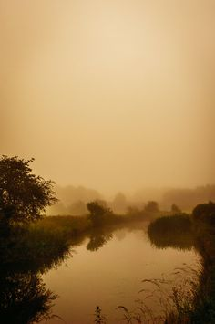 Morning Canal Mists by Grunvald.deviantart.com on @deviantART