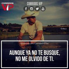 Nunca.!  ____________________ #teamcorridosvip #corridosvip #corridosybanda #corridos #quotes #regionalmexicano #frasesvip #promotion #promo #corridosgram - http://ift.tt/1HQJd81