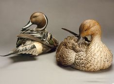 Discover 14-time World Champion Wildfowl Artist, Pat Godin. A master of carving…
