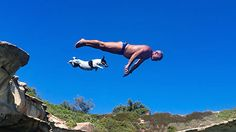 The Diving Dog: This Fearless Jack Russell Jumps From Huge Cliffs With Her Proud Owner.