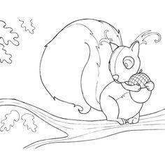 Cahier de coloriage Caprices Animaux de la forêt - 60 pages