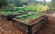 If space is an issue the answer is to use garden boxes. In this article we will show you how all about making raised garden boxes the easy way. We all want to make our gardens look beautiful and more appealing. Plants For Raised Beds, Raised Garden Beds, Sloped Garden, Raised Gardens, Raised Beds Sleepers, Raised Planter, Garden Boxes, Vegetable Garden, Back Gardens