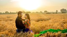 This warm and sunny picture ...Photo by Nirav Patel Photography, Surat #weddingnet #wedding #india #indian #indianwedding  #prewedding #photoshoot #photoset #hindu #sikh #south #photographer #photography #inspiration #planner #organisation #invitations #details #sweet #cute #gorgeous #fabulous #couple #hearts #lovestory