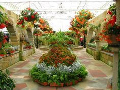 The conservatory Hobart Botanical Gardens