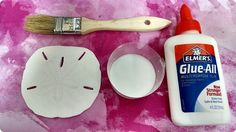 Supplies needed for hardening sand dollars