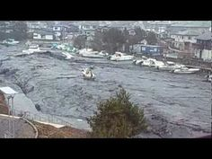 3.11 東日本大震災 津波 多賀城市 貞山運河 Japan earthquake Tsunami