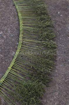 Det är hög tid att göra en gräskrona nu, om man vill ha en. Gräsblomsstjälkarna är alldeles snart för styva och torra för att låta sig fl...