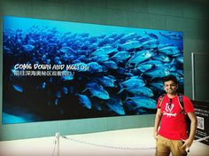 Come down and meet us!   Beautiful   #singapore #singaporediaries #seaaquarium #followme #followforfollow #follow4follow #travel #instagood #instadaily #instagram #luxury #wanderlust #shark #sea #animal #fish